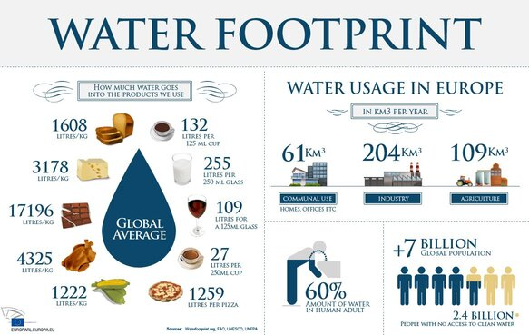 The Water Footprint (or virtual water) is illustrated above for many basic commodities where one country can have a significant impact on the water security of another country: IAHR has much to contribute in providing the expertise to ensure that, for example, the virtual water used in coffee production is returned to the ecosystem of high quality.