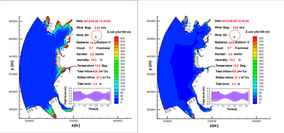 Hydro-epidemiological predictions of e.coli levels from the Ribble Basin to the Fylde Coast (UK), with (left) and without (right) sediment coupling, highlighting the importance of sediment transport as a means of transporting e.coli from catchment to coast