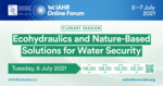 Ecohydraulics and Nature-Based Solutions for Water Security